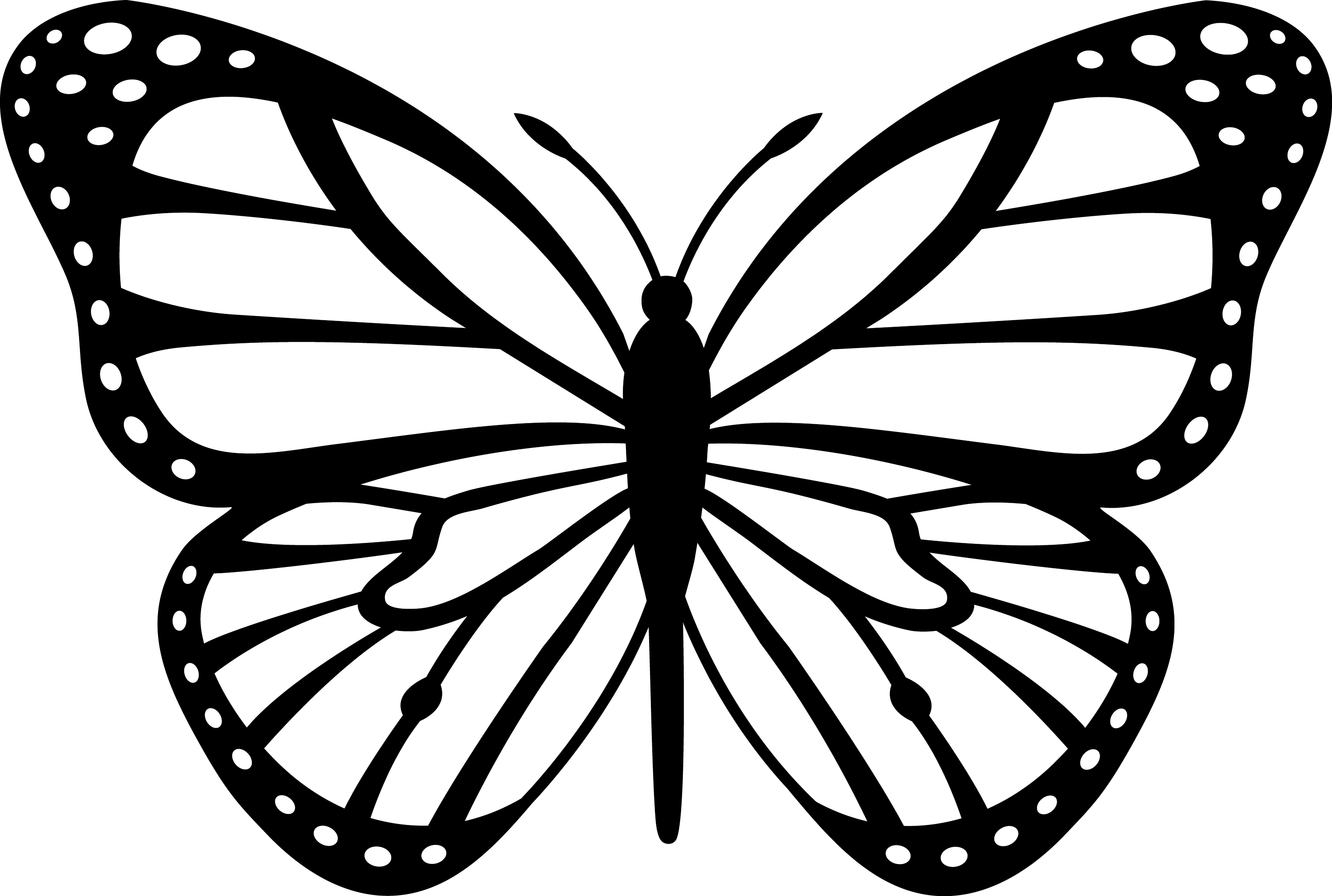 black and white monarch butterfly